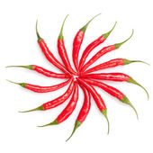 Sun from chili peppers isolated on white — Stock Photo