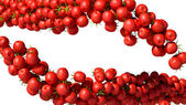 Two Tomatoes Cherry flows isolated — Stock Photo