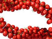 Tasty and fresh Tomatoe Cherry flows — Stock Photo