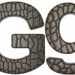 Alligator skin font G lowercase and capital letters - Lizenzfreies Foto