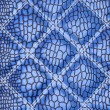 Blue Alligator skin with stitched rectangles — Stock Photo #5649961