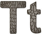 Alligator skin font T lowercase and capital letters — Stock Photo