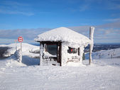 Skiën in lapland — Stockfoto