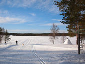 Cross-country tracks in Lapland — Foto de Stock