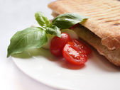 Grilled panini sandwich with tomatoes, mozzarella cheese and bas — Stock Photo