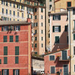 Homes in Camogli — Stock Photo #5480926