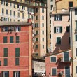 Homes in Camogli — Stock Photo
