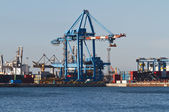 Port with cranes and containers — Foto Stock