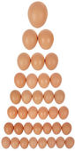 Eggs in row — Foto de Stock