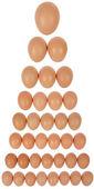 Ovos em linha — Fotografia Stock