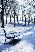 Día de invierno — Foto de Stock