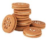 Biscuit cookies stack — Stock Photo