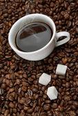焙煎した豆に砂糖とコーヒー カップ — ストック写真