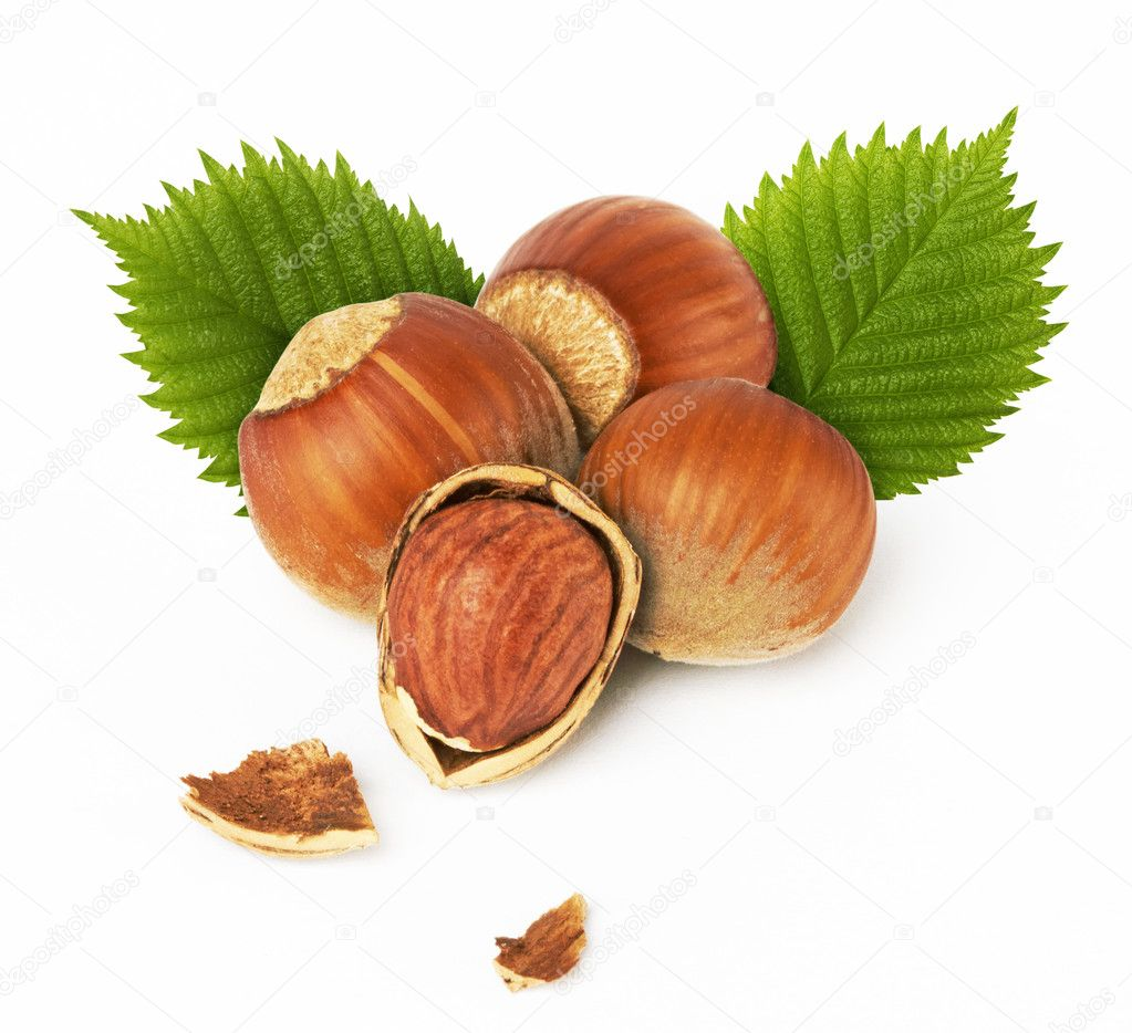 Hazelnuts with leaves stock photo krasyuk 5697118 - Noisette dessin ...