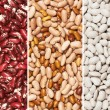 Mixture of beans - Stock Photo