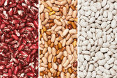 Mixture of beans — Stock Photo