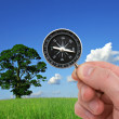 Stock Photo: Hand with compass on nature background.