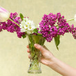 Female hand holding flowers. — Stock Photo #5664401