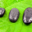 Wet  stones on the green leaves. — Stock Photo