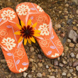 Flip flops and yellow flower — Stock Photo