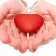 Stock Photo: Red heart in a woman hands.