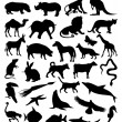 Collection of silhouettes of animals from all continents.  — Image vectorielle
