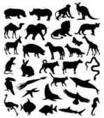 Collection of silhouettes of animals from all continents. — Stock Vector