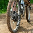 Rear wheel mountain bike — Stock Photo #6049968