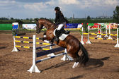 Competitions on concours - the woman jumps through a barrier — Stock Photo