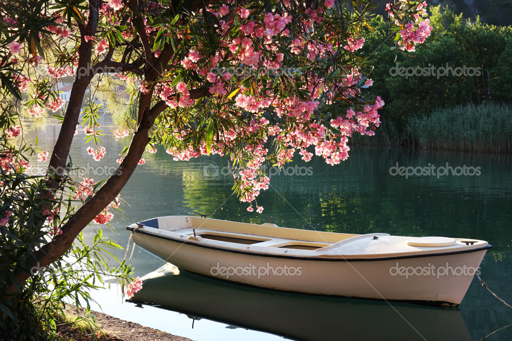 Фотообои Лодка на реке