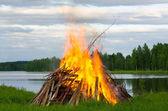 Big fire — Stock Photo