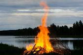 Night fire — Stock Photo