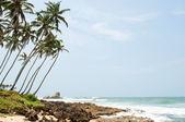Tropical paradise in Sri Lanka — Stock Photo