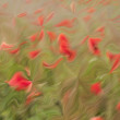 Blur, red flower and green field background — Stock Photo