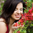 Woman in garden with red flowers - Stockfoto