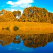Autumn forest with symmetric reflection in lake — Stock Photo #5487897