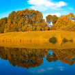 Stock Photo: Symmetric reflection in lake
