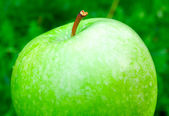 Fresh bright green apple — Stock fotografie