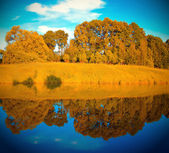 Autumn forest with symmetric reflection in lake — Stock Photo