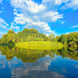 Picturesque scene of beautiful rural lake — Foto Stock