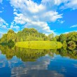 Picturesque scene of beautiful rural lake — Stock Photo #6710617