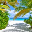 Stock Photo: Tropical beach with palm trees near blue sea