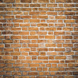 Persistence concept, background of red brick wall texture — Stock Photo #6711123