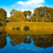 Symmetric reflection in lake — Stock Photo