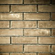 Royalty-Free Stock Photo: Old grunge brick-wall texture