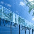 Royalty-Free Stock Photo: Green palms, hotels and luxury apartments