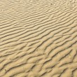 Puckered texture of sand beach — Stock Photo #6713037