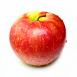 Single red apple isolated on white - Stock Photo