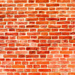 Closeup of brick wall — Stock Photo #6713585