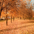 Stock Photo: Vanishing path in autumn park